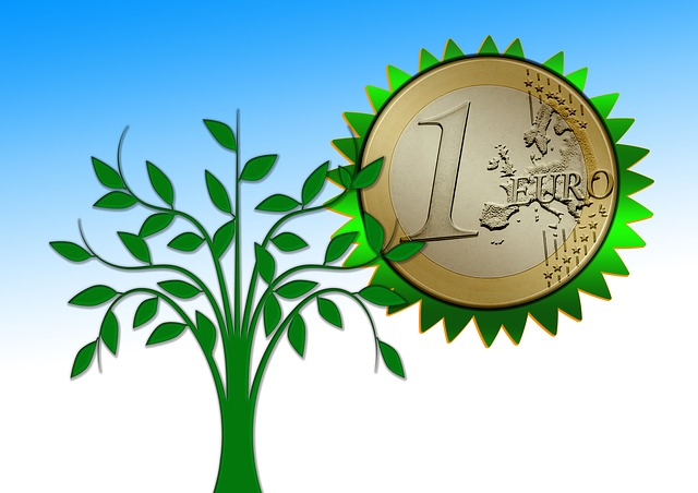 strom, 1 euro, mince
